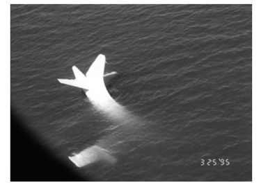 VP-47 P-3 Ditched in Gulf of Oman 1995